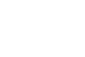 the-iep-group-logo-white