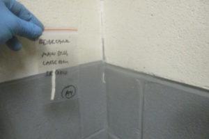 asbestos-sealant-test